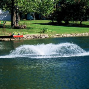 Airolator Aquarian Professional Single Phase Clearwater Lakes and Ponds