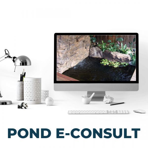 Pond E-Consult - Get a pond e-consult and enjoy all the benefits of a standard consultation right from your smart device
